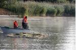 Průzkum rybích společenstev u experimentálních plovoucích ostrovů Průzkum rybích společenstev u experimentálních plovoucích ostrovů