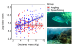 Social engagement of marine recreational anglers  Social engagement of marine recreational anglers and spearfishers targeting common dentex (Dentex dentex), an iconic species for Mediterranean fisheries, based on videos posted on YouTube [Sbragaglia et al. 2019. ICES J Mar Sci, fsz100] (photo: David Mandos).